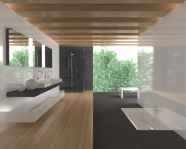 C4D Bath 3D Model