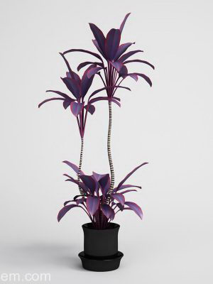 Beautiful Flower with flower pot 3D Model