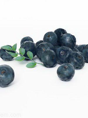 Blueberries 3D Model