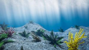 Cinema 4D Underwater Free Scene
