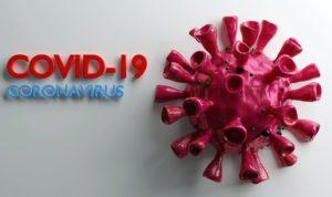 Covid-19 Virus 3D Model