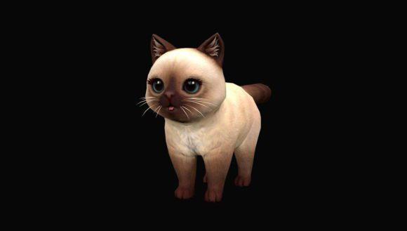 Cute Cat Free 3D Model