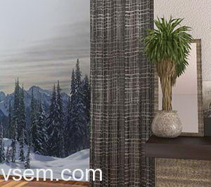Decoration Curtain 3D Model