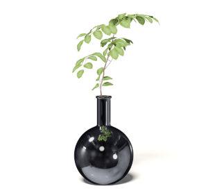 Free 3D Chrome Vase Model