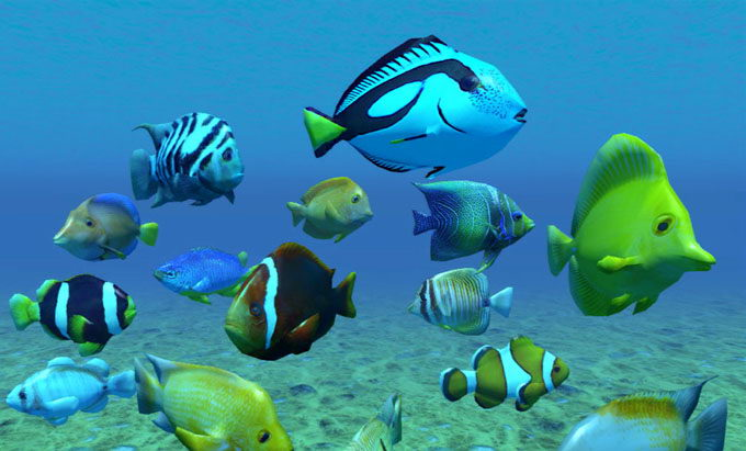 Free Fish 3D Models Pack