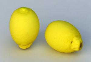Fresh Lemon Free 3D Model