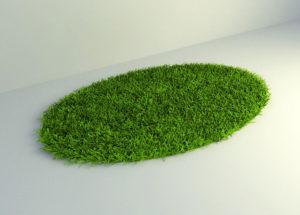 Grass Green Round Carpet 3D Model