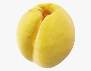 Hi Poly Apricot 3D Model