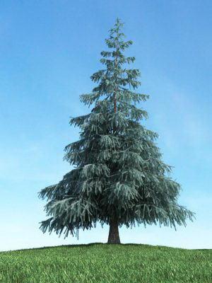High quality Tree 3D Model