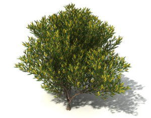 Medium Yellow Leaf Tree 3D Model