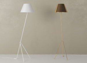 Minimal Decorative Floor Lamp 3D Model