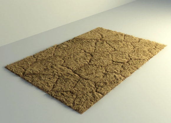 Modern Design Brown Fur Carpet 3D Model