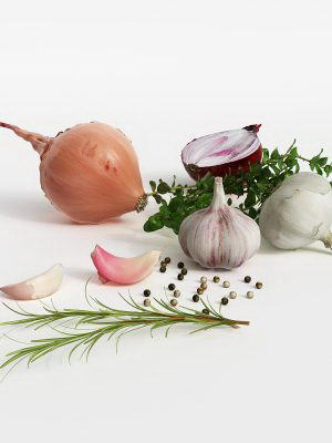 Onion and Garlic 3D Model
