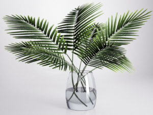 Palm with Glass Vase 3D Model