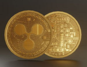 Ripple Xrp Coin 3D Model