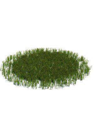 Round Grass 3D Model