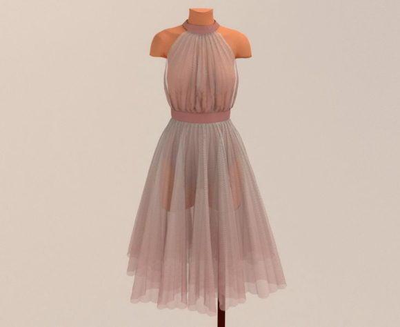 Soft Ballerina Dress 3D Model