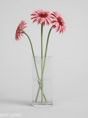 Three Daisies With Glass Vase 3D Model