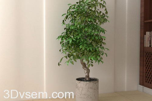 Tree with flower pot 3d model