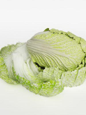 White Cabbage 3D Model