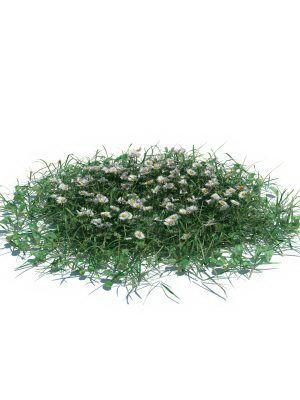 Wild Flowers 3D Model