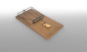 Wooden Mouse Trap 3D Model